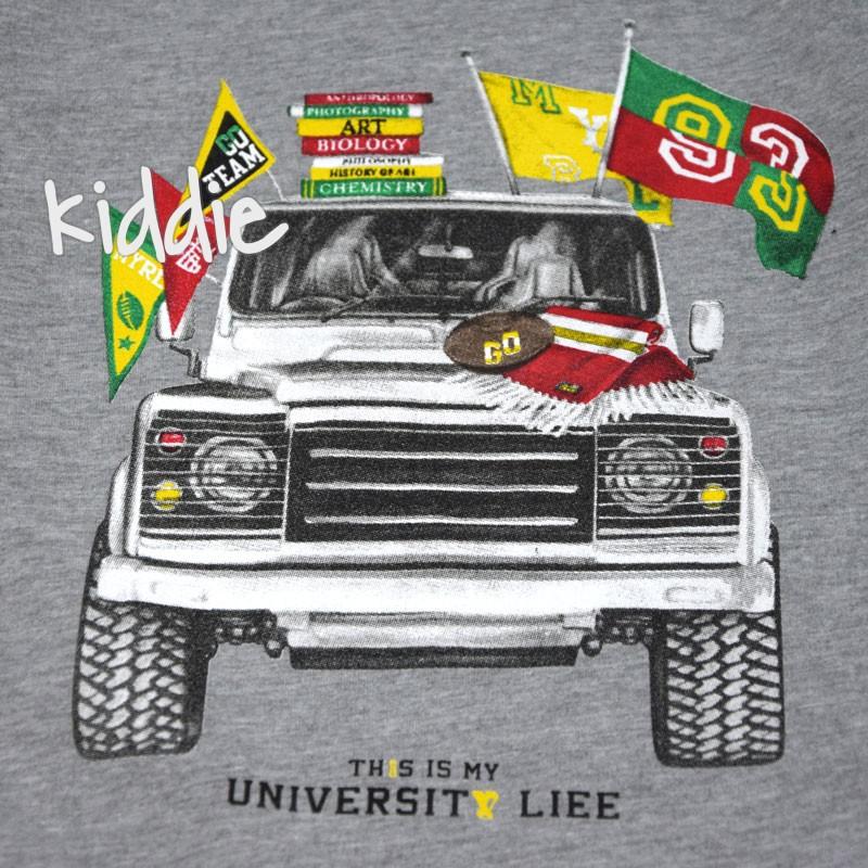 Bluza de baieti University Life Wanex